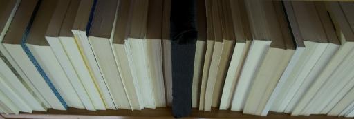 Libro malo